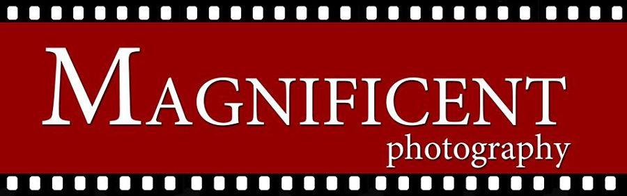 Magnificent - logo_opt