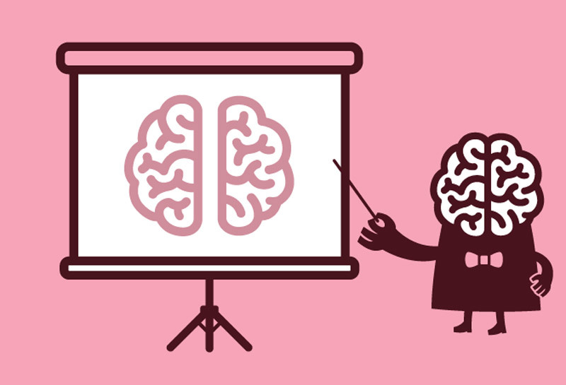 content_what-we-know-brain