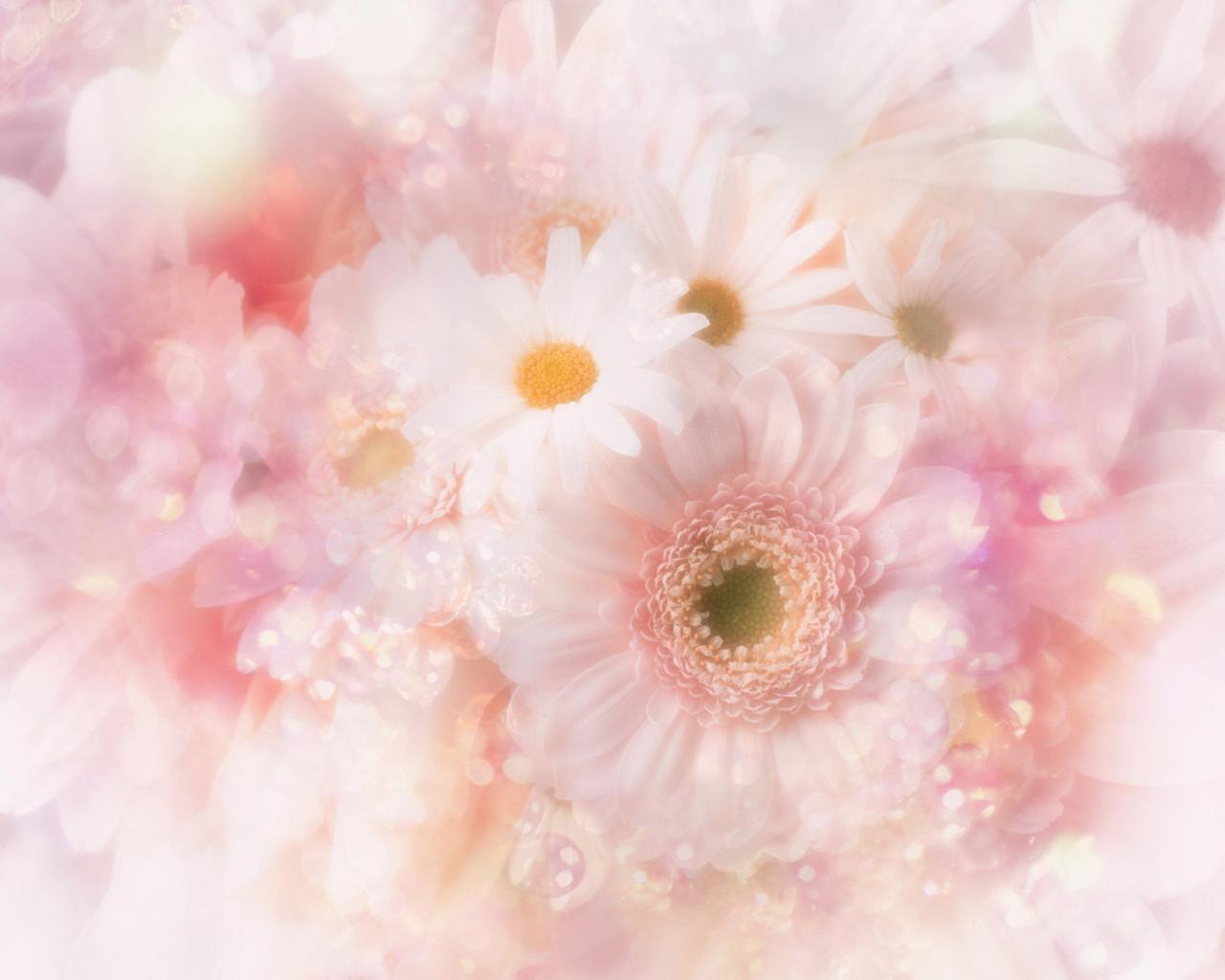 hq-wallpapers_ru_flowers_37627_1280x1024