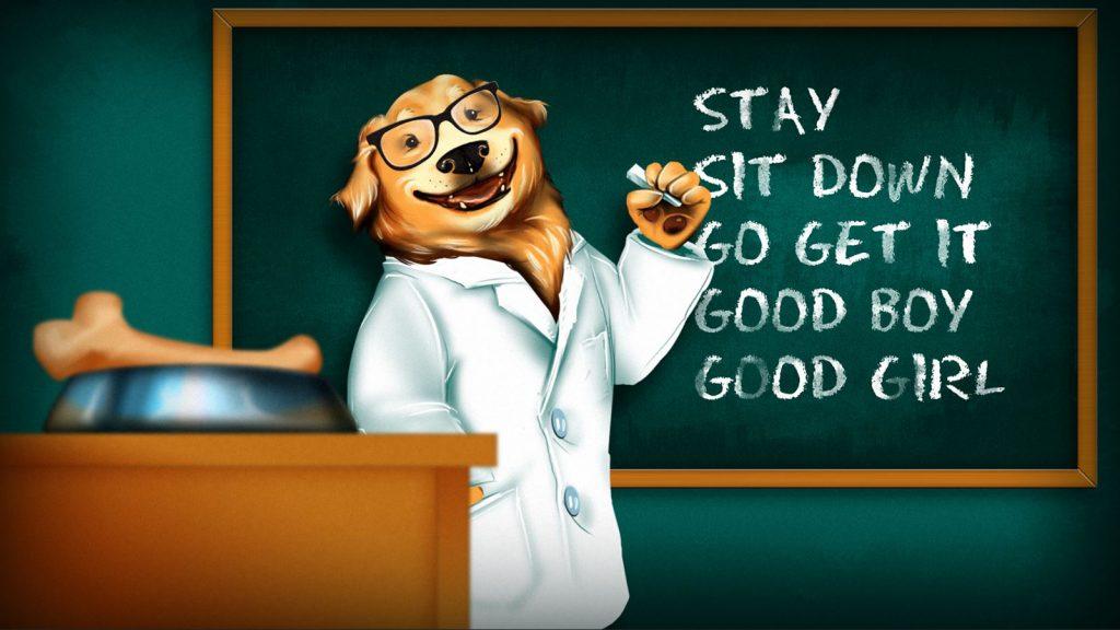 dogschool — копия